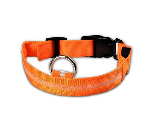 Nylon LED Collar para Perros para Mascotas Perros Collares Luminosos Fluorescentes Suministros para Mascotas Seguridad Nocturna Parpadeante Correa para Perros Que Brilla en la Oscuridad - Naranja, S