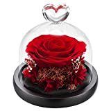 Forever Roses Preserved Real Flowers Eternal Enchanted Rose Flower Box Gift for Valentines Birthday Anniversary Mother's Day Christmas(Red)