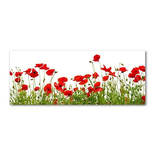 Tulup Acrylglas - Wandkunst - Bild auf Plexiglas Deko Wandbild hinter Kunststoff/Acrylglas Bild - Dekorative Wand für Küche & Wohnzimmer 125 x50 cm - Blumen & Pflanzen - Mohnblumen - Rot