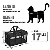 Zoom IMG-1 hitchy trasportino gatto cane per