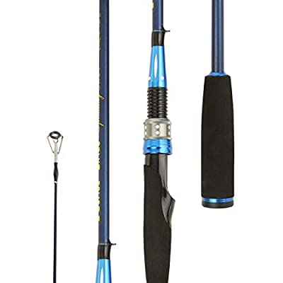 Entsport E Series - Sirius Spinning Rod 2 Piece 7' Graphite Portable Fishing Rod