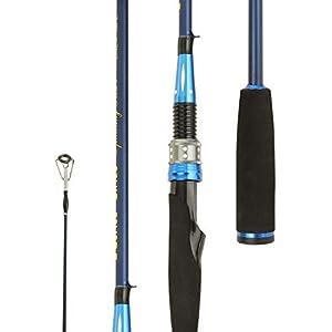Entsport Sirius 2-Piece Spinning Rod (Sleekest Rod)