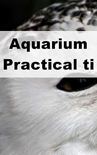 Aquarium Practical tips (Dutch Edition)
