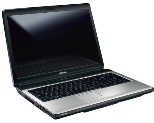Toshiba Satellite L350D-11O 43,2 cm (17,0 Zoll) WXGA+ Laptop (AMD Turion X2 Dual Core RM-72 2,1GHz, 3GB RAM, 320GB HDD, ATI Radeon 3100 Graphics, DVD+- DL RW, Vista Home Premium)