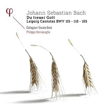Bach: Du Treuer Gott. Leipzig Cantatas BWV 101, BWV 103 & BWV 115
