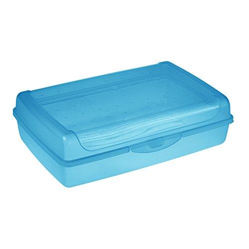 keeeper Frischhaltedose mit Klickverschluss, 30 x 20 x 8,5 cm, 3,75 l, Luca Maxi, Blau