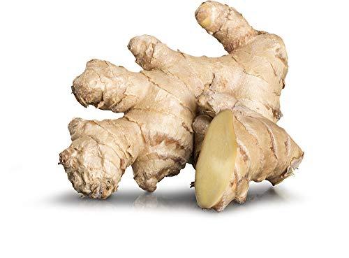 Obst & Gemüse Bio Ingwer (1 x 1000 gr)