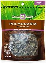 Pulmonaria - Lungwort Herbal Infusion Tea