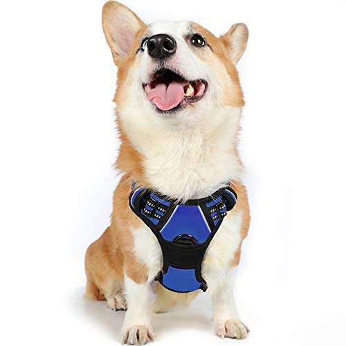 rabbitgoo Dog Harness, No-Pull Pet Harness with 2 Leash Clips, Adjustable Soft Padded Dog Vest, Reflective No-Choke Pet Oxford Vest with Easy Control Handle for Medium Dogs, Navy, M