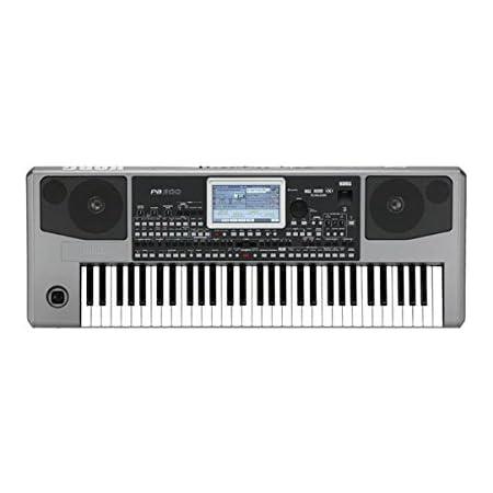 Korg PA900 piano digital - Teclado electrónico: Amazon.es ...