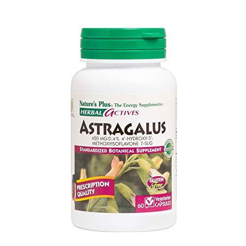 NaturesPlus Herbal Actives Astragalus - 450 mg, 60 Vegan Capsules - Standardized Herbal Supplement, Supports Heart & Immune Health - Hypoallergenic, Vegetarian, Gluten-Free - 60 Servings