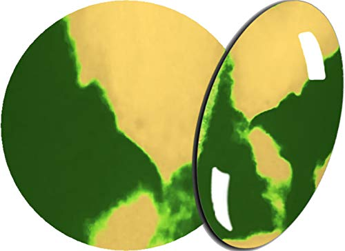 De 2 Färbiges acrylique de poudre 5 g, 2tones-02 Vert mousse/crème – envyu : # 2T pour la Rapide mais joli Nail Art