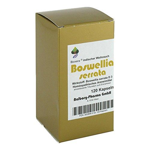 BOSWELLIA SERRATA BIOXERA, 120 St