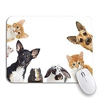 可愛いマウスパッド ペットの茶色の犬は猫のウサギの豚のギニアの滑り止めのゴム製のノートパソコンのマウスパッドのマウスパッドを探しています
