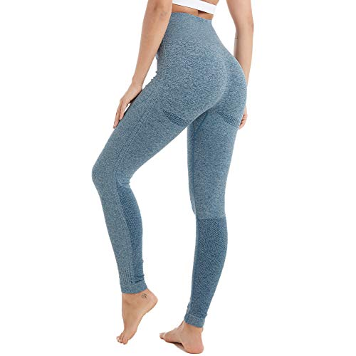 Aoxjox Seamless Leggings for Women High Waisted Ombre Gym Workout Yoga Pants (Marine Blue Marl, Small)