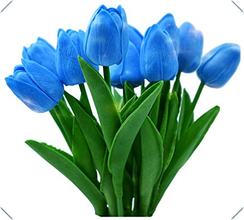 Tulipanes bulbos-Flor mágica mágica hermoso jardín 4 bulbos de tulipán populares (sin semillas), productos confiables, alta tasa de germinación,-10bulbos,azul