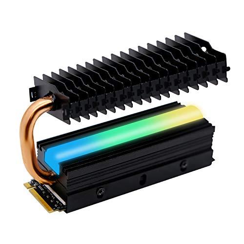 EZDIY-FAB 5V 3 Pin M.2 Dissipatore di Calore con Heatpipe,ARGB SATA NVMe NGFF M.2 Dissipatore di Calore SSD Cooler per 2280 M.2 SSD,con Thermal Pad (SSD Non Incluso)