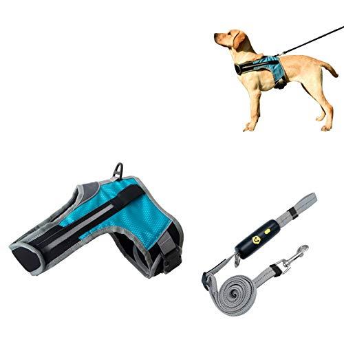 AKlamater Perro reflexivo Aprovechar, Azul Ajustable LED Lámpara Seguridad Nocturna Perro Chaleco de arnés con Correa Reflectante Desmontable de 1,6 m para pequeños(XL)