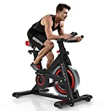 OUNUO Exercise Bikes (2020 New Version), Indoor Cycling Bike, Stationary, Bidirectional Flywheel, Silent Belt Drive, Infinite Resistance, LCD Displays, Handlebar, Pulse Sensor