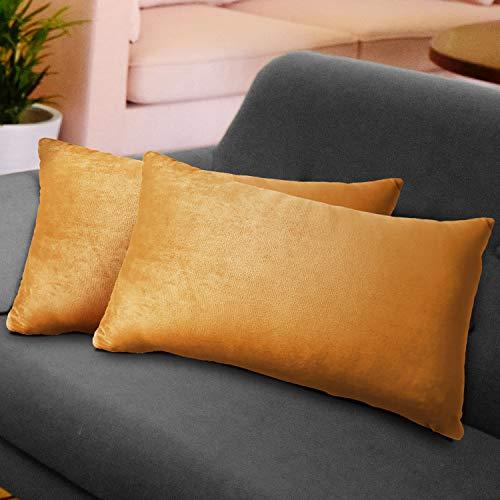 WEYON 2er Set Samt Kissenbezug Dekorative Dekokissen Kissenhülle mit Strapazierfähigem Verstecktem Reißverschluss für Sofa Schlafzimmer Auto 40X80cm Zitronengelb