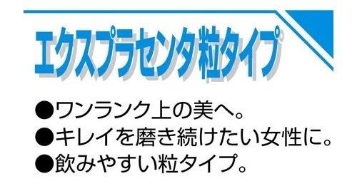 井藤漢方製薬エクスプラセンタ粒タイプ約30日分250mgX120粒