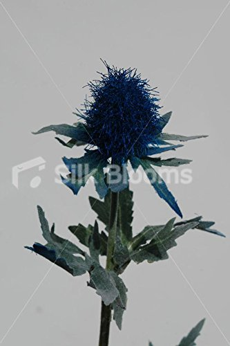 Silk Blooms Ltd Artificial Dark Blue Scottish Sea Holly Thistles, Blue Thistles