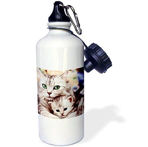 yuiend Chats Sport bouteille d'eau, 21 oz