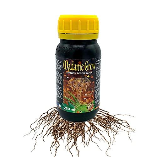 Enraizante y Crecimiento – Acción 2 en 1 - Fertilizante o Abono Líquido Orgánico - Plantas Fuertes y Sanas – Raíces Blancas – Hojas Verdes – Vigor en tú Planta (250 ml)