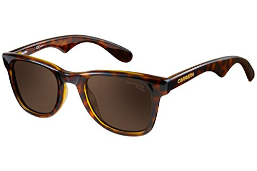 Carrera 6000 SP 791 Gafas de sol, Marrón (Havana/Gold Polarized), 50 Unisex-Adulto