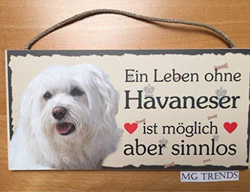 Türschild Havaneser (27) aus Holz Schild Hund deutsche Herstellung