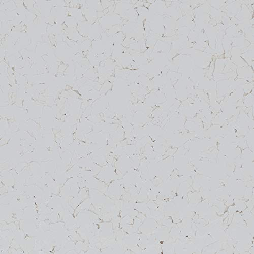 The Original Color Chips Decorative Floor Coating Flakes (1/4