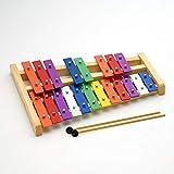 カラフル鉄琴 20音(半音付き) 子供用 知育 楽器 玩具 誕生日 プレゼントにおすすめ エミュール