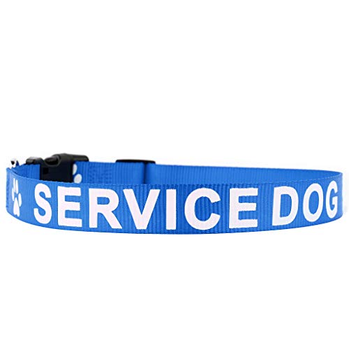 PLUTUS PET Service Dog Collar,Printed in Large Letters on Nylon Webbing,Prevents Accidents by Warning Others of Your Dog in Advance,Two Colors,Four Sizes,Neck 16-24 inch,Large,Blue