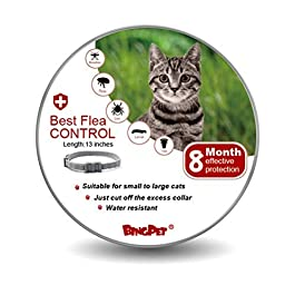 BINGPET Flea and Tick Collar for Cat – 8 Month Protection Adjustable Collar- Best Flea Control Treatment for Kitten