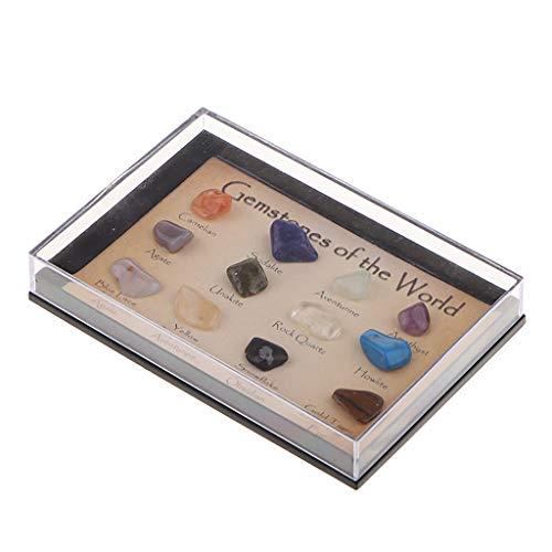 Gazechimp Muestra de Gemas Minerales Minerales Piedras Preciosas - estilo 2 (15 piezas)