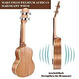 Immagine 2 martisan ukulele soprano con corde