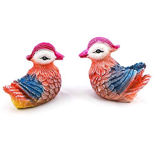 Aqua KT 2 PCS Mini Bird Miniature Fairy Garden Figurine Animal for Home Fairy Garden Micro Landscape Plant Pot Bonsai Craft Decoration