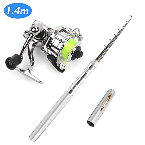 PiscatorZone Pen Fishing Pole 39 Inch Mini Pocket Fishing Rod and Mini Metal Spinning Wheel Travel Fishing Rod Set for Ice Fly Fishing Sea Saltwater Freshwater (Silver, 39In)