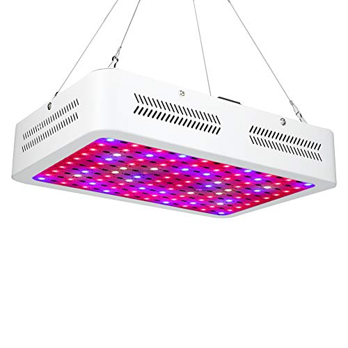 CDSL Lámpara Luz De Crecimiento De La Planta LED De Un Solo Control 1000W para La Luz De La Planta De Horticultura De Invernadero 85-265V En El Enchufe del Reino Unido