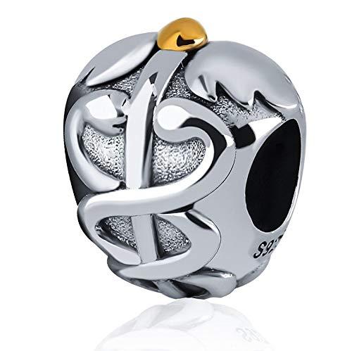 Bolenvi Caduceus Medical Symbol Nurse Doctor Physician 925 Sterling Silver Charm Bead for Pandora & Similar Charm Bracelets or Necklaces