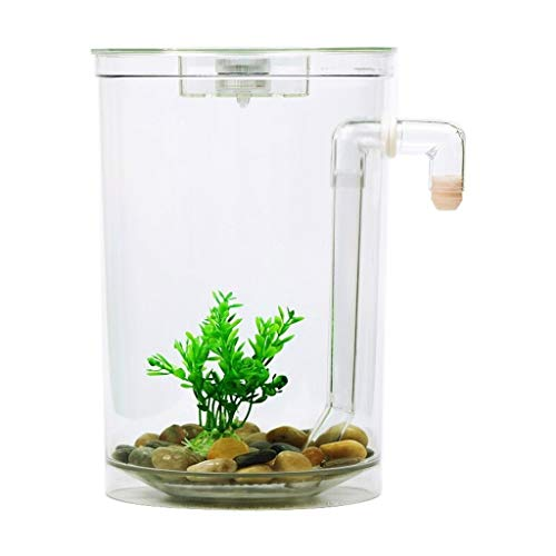 Liefde lamp Luie Zelfreinigend Kleine Creatieve Sier Goudvis Tank Water Exchange Kantoor Ecologische Acryl Kunststof Mini Vis Tank