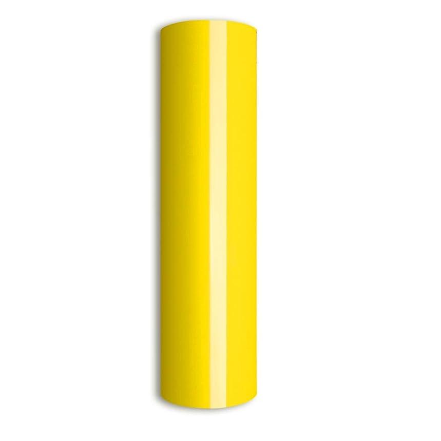 Lemon Yellow 10'' by 5 Feet Heat Transfer Vinyl,Iron on HTV Compatible with Cricut, Cameo, Heat Press Machines, Sublimation (Lemon Yellow)