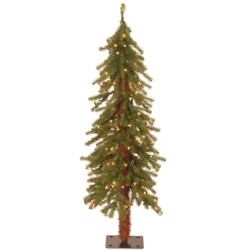 National Tree Company Pre-lit Artificial Christmas Tree | Includes Pre-strung White Lights and Stand | Hickory Cedar - 4 ft