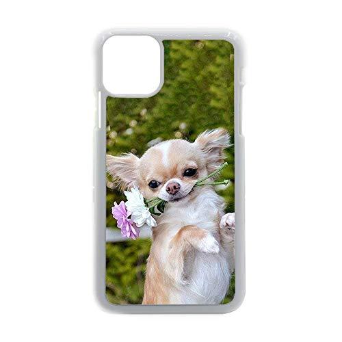 Teléfono Cáscara Dura Pc Imprimir con Chihuahua 2 Hombre Compatible iPhone 11 Fascinante Choose Design 144-1