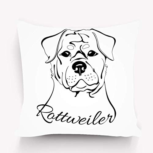 N\A Throw Pillow Cover Case Rottweiler Dog Head Esquema Dibujo s Palabras
