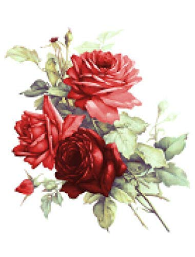 VERITS for Vintage Image Victorian Shabby Red Cabbage Roses Furniture Transfer Decals FL497 Tole Decals & Transfers - Size is A - 1 Extra Large