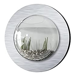 Fish Bubbles Brushed Aluminum Fish Bubble - Best Wall Mounted Aquariums