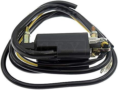 ZMMWDE Bobina de Encendido de Salida de Cable Dual Universal de 12 voltios y 4 ohmios,para Kawasaki KZ400 KZ400A KZ400B KZ400C KZ400D KZ400H KZ400S KZ440 AC