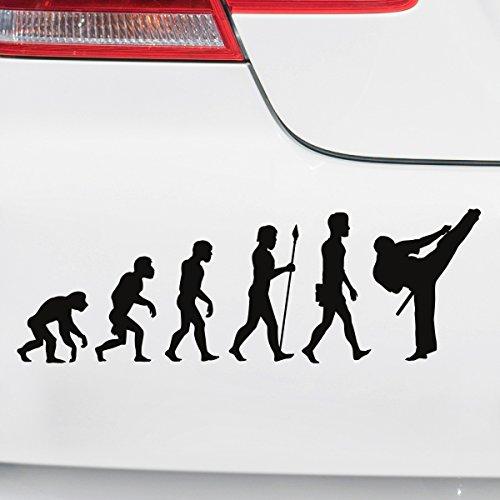 Motoking Autoaufkleber - Lustige Sprüche & Motive für Ihr Auto - Evolution Karate - 25 x 8,3 cm - Weiß Glänzend