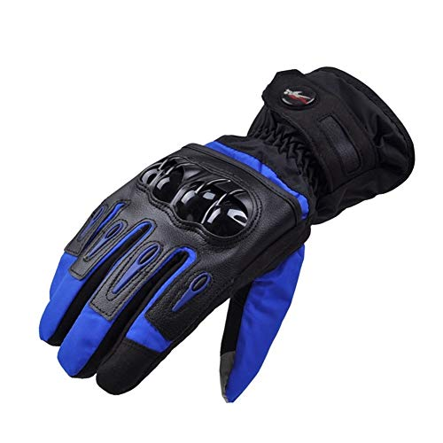 Guantes de Moto Invierno Luva Motociclista Couro Gants Guantes Moto Invierno for Moto de Motocross Montar a Caballo de Ciclo del Deporte (Color : Blue, Size : XL)